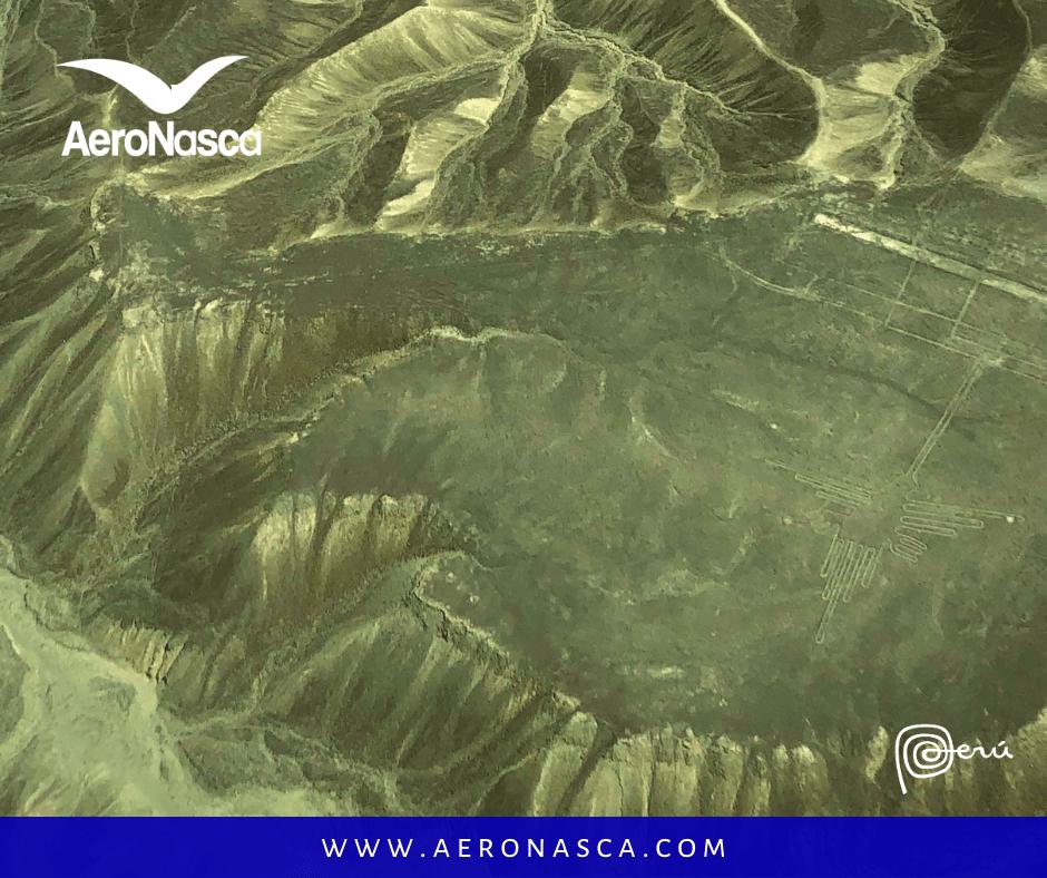 Turismo en Nazca: Tour a las Líneas de Nazca