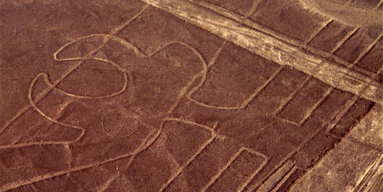 Papagallo una de las Lineas de Nazca