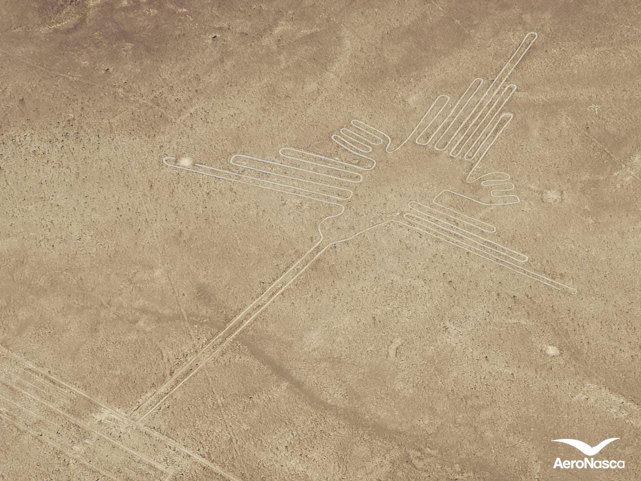 Imagenes de las Lineas de Nazca: Colibri