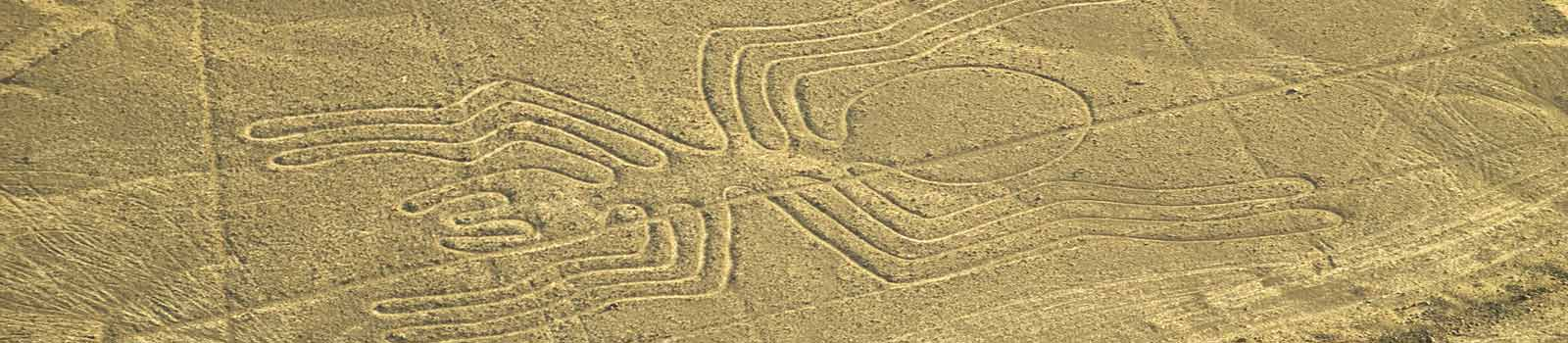 The Spider: one of the most famous Nazca Lines in the World.