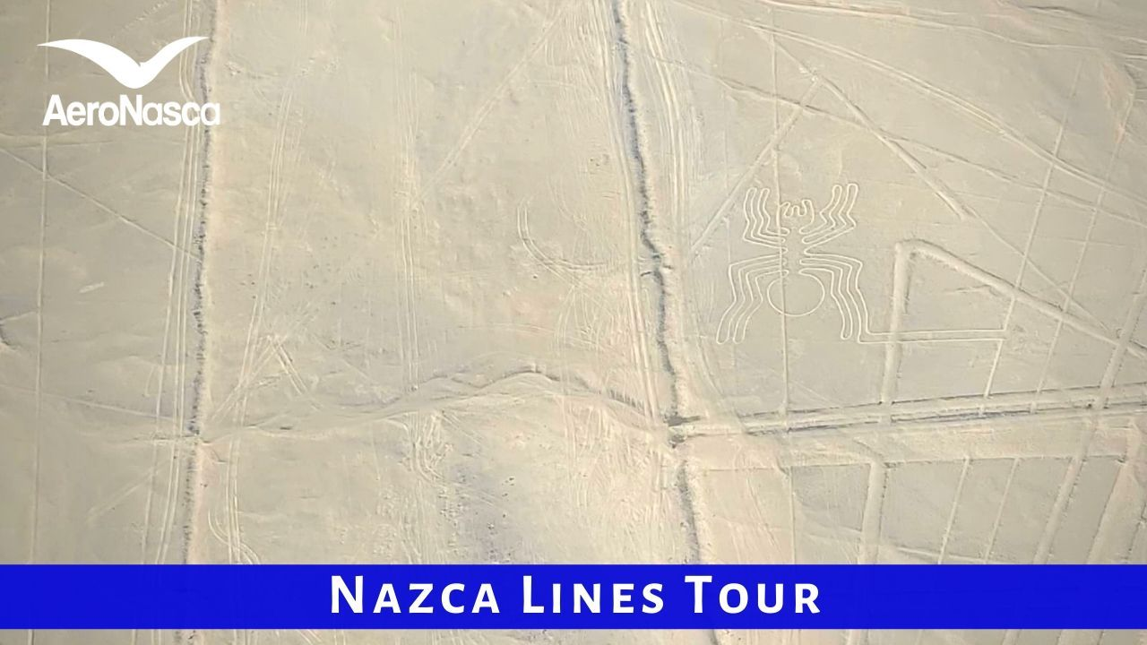 Nazca Lines Tour In Peru With AeroNasca