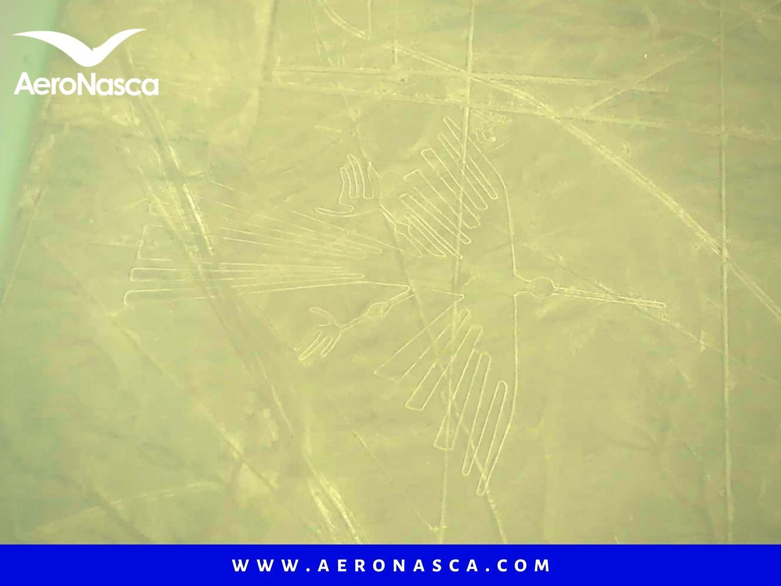 El Condor Lineas de Nazca