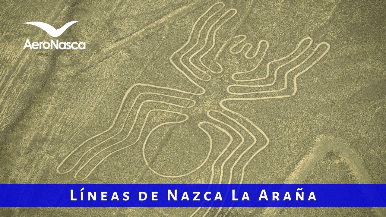 Lineas De Nazca La Araña