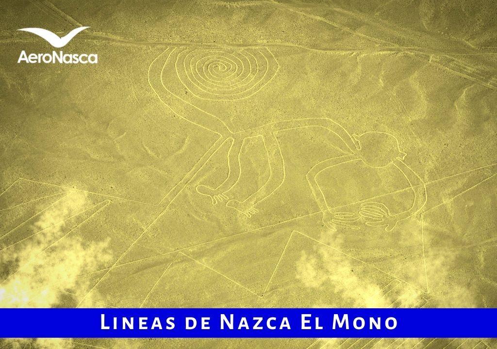 Lineas De Nazca El Mono
