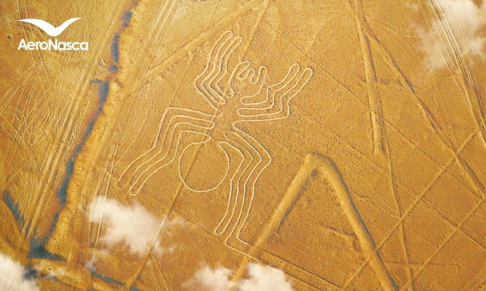 Sobrevuelo a las Lineas de Nazca desde Pisco