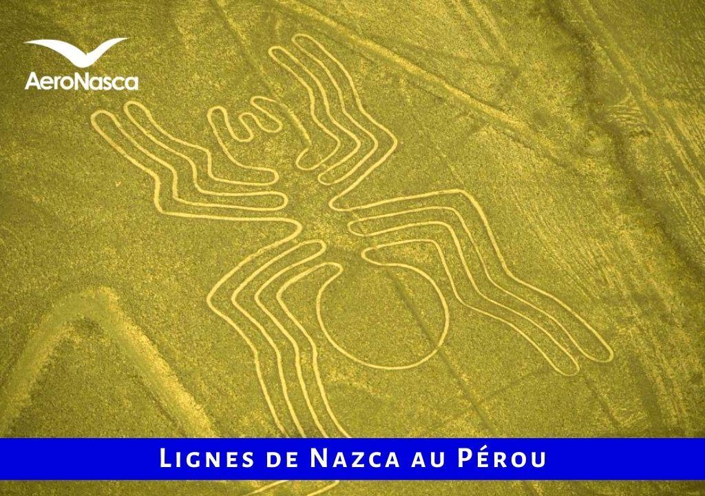 Lignes De Nazca Pérou