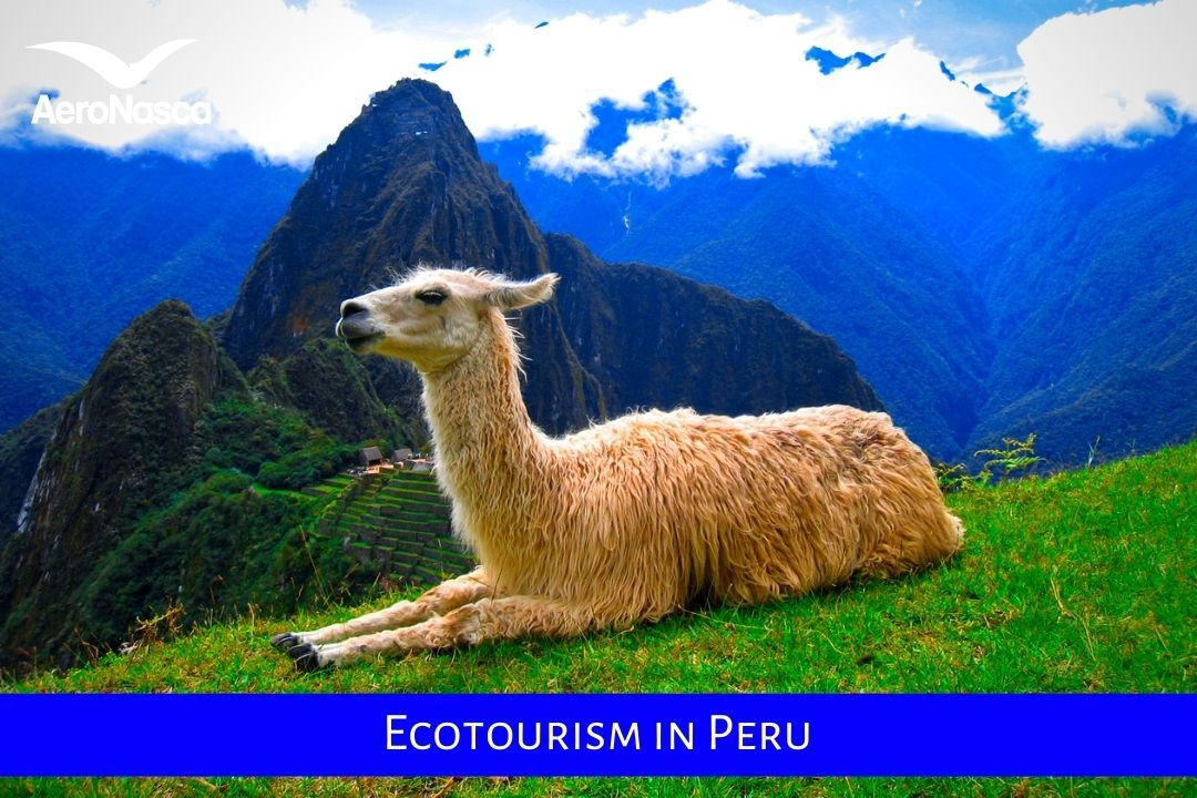 Ecotourism In Peru