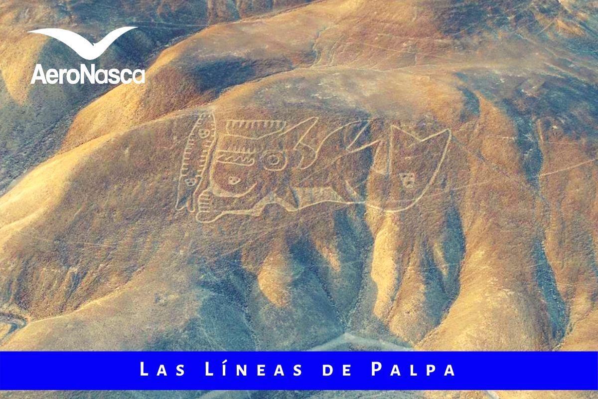 Palpa Lines Peru 🥇