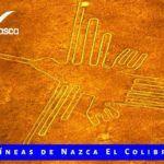 Lineas de nazca El Colibrí AeroNasca