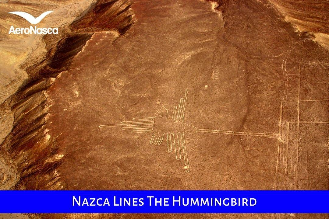 Nazca Lines The Hummingbird