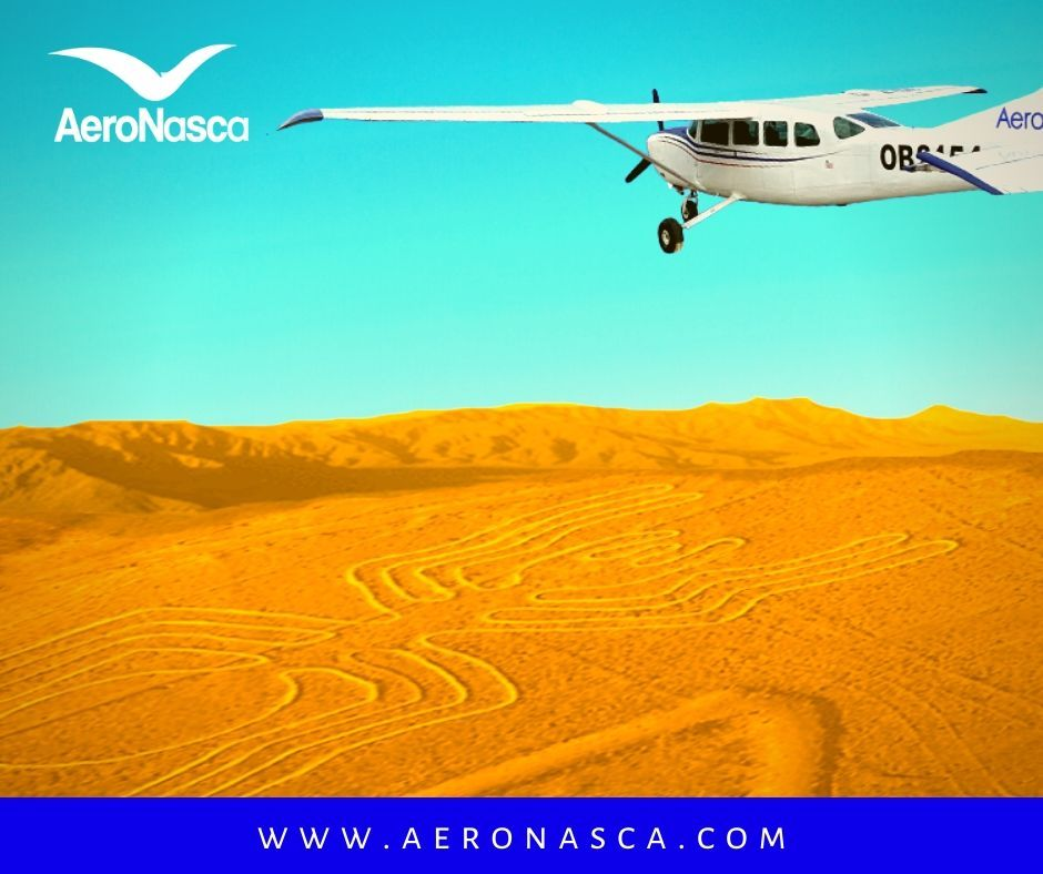 Nazca Lines Flight + Buggies and SandBoarding Tour