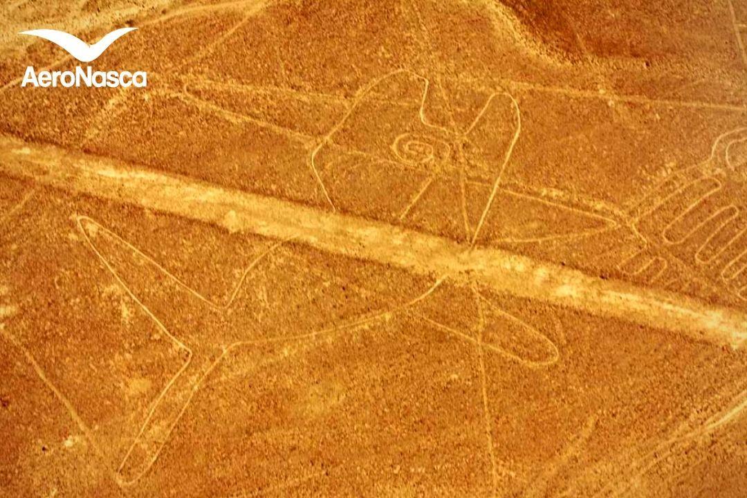 Ballena de las Líneas de Nazca