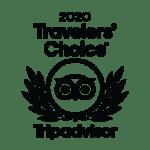AeroNasca Premio Travelers Choice 2020 Mejor Tour Y Sobrevuelo A Las Líneas De Nazca
