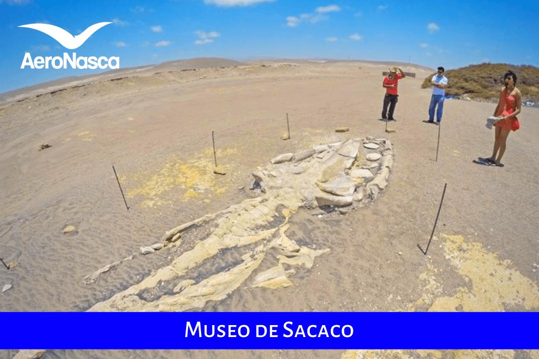 Museo De Sacaco