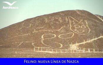 Felino Nueva Línea De Nazca