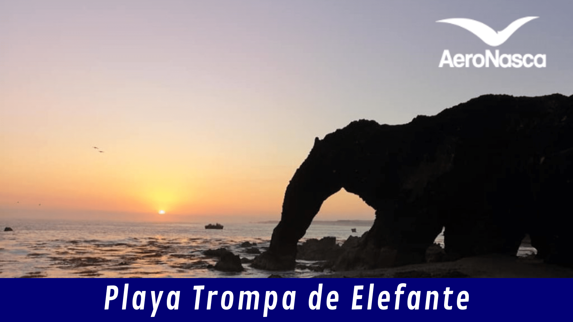 Playa Trompa De Elefante